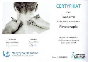 pinoterapia